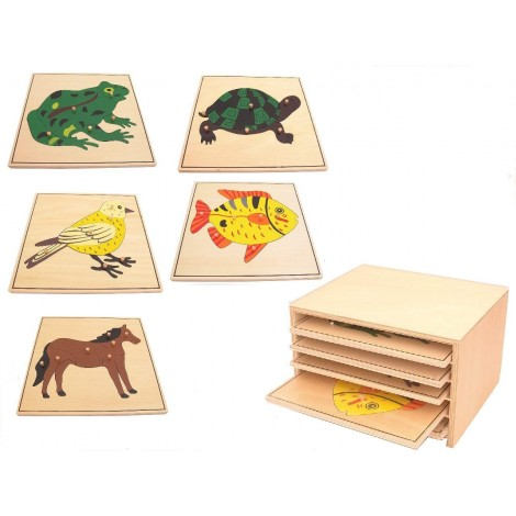 Zoology Animal Cabinet with 5 Puzzles